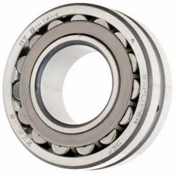 Top Sale! Discount with Stock SKF NSK 22224 Spherical Roller Bearing