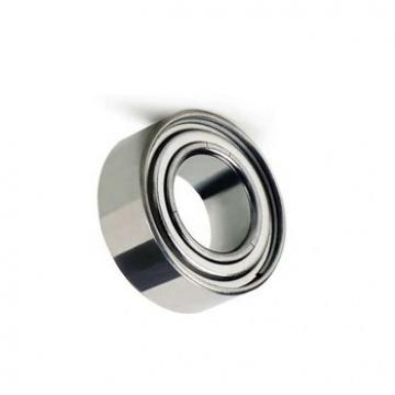 Precision 688zz 8X16X5 L-1680zz China Miniature Ball Bearing