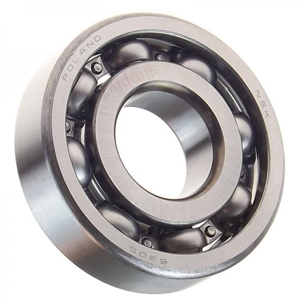China Factory Fxm SKF, NSK, NTN, Koyo NACHI 6001 6002 6003 6004 6201 6202 6305 6203 6208 6315 Deep Groove Ball Bearing #1 image